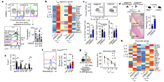 """Nature: Cancer cells can  """"instigate"""" some immune cells to protect cancer cells"""