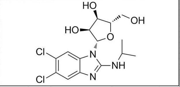 New antiviral drugs: Takeda maribavir Phase-3 trails success