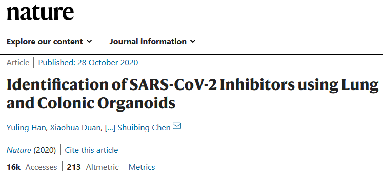 Nature: Successfully screen candidate drugs for COVID-19 treatment by organoids