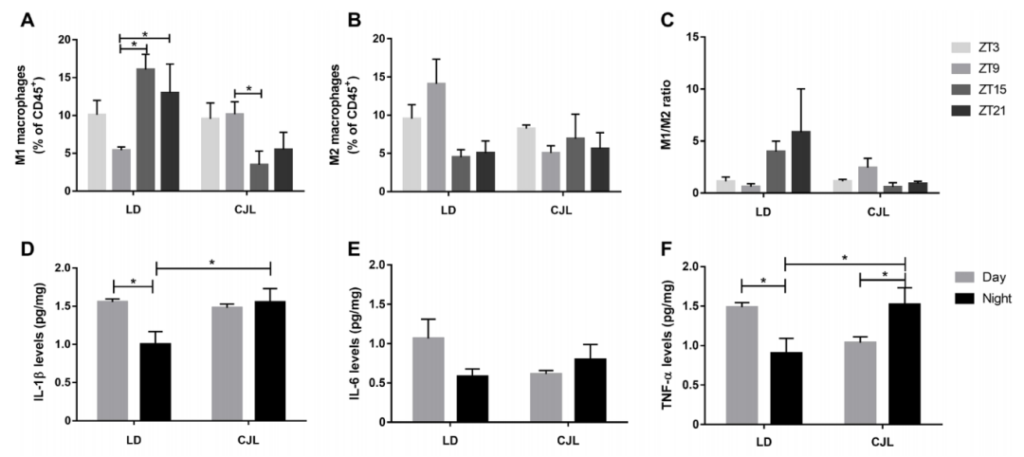 Science: reversed work and rest or circadian disturbance will promote cancer cell proliferation