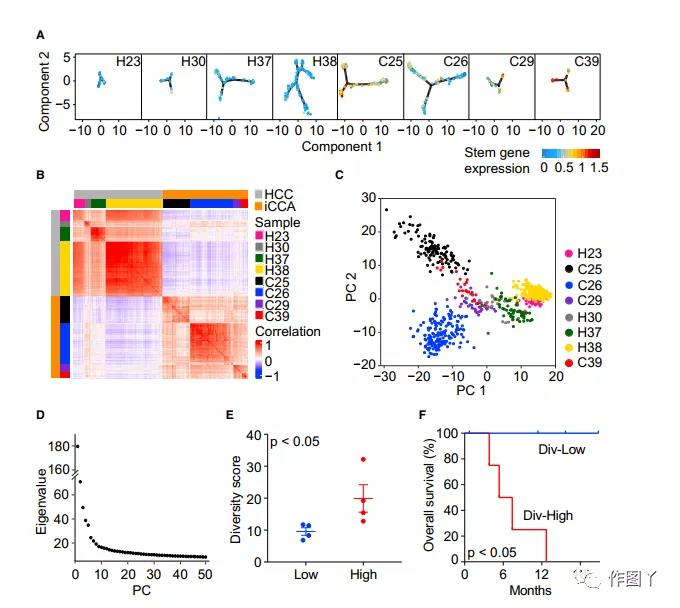 The diversity of tumor cells drives the reorganization of the liver cancer microenvironment