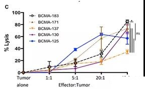 Screen the best scfv to construct a clinically suitable CART cell vector