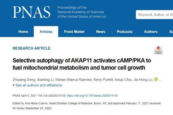 PNAS: Reveals a new type of autophagy cell protection mechanism