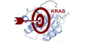The history and current status of KRAS target