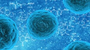 New single-cell sequencing reveals genetic mutations of breast tumor. New single-cell sequencing technology reveals the continuous accumulation of genetic mutations during breast tumor growth.