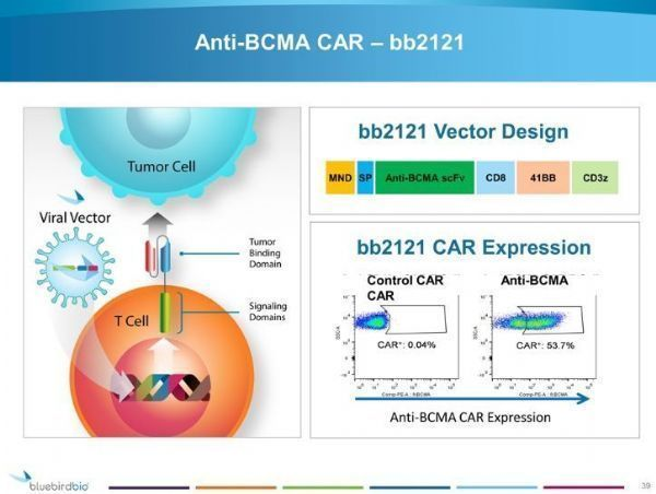 World First BCMA CAR-T therapy: Bristol-Myers Abecma for multiple myeloma