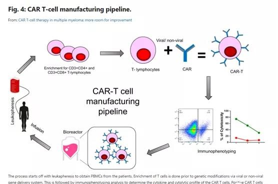 How to treat multiple myeloma by CAR-T cell therapy?