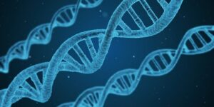 What factors should you consider before choosing a DNA polymerase?