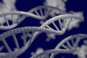 What is the role of breast cancer 21 gene detection?