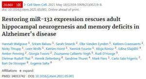 Targeting miR-132 is expected to rejuvenate the brains of Alzheimer patients