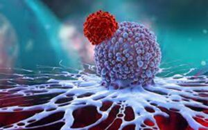 CAR-T cells and oncolytic viruses jointly treat solid tumors