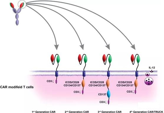 The latest review of CAR-T treatment of cancers