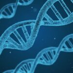 What is the impact of gene editing on gene therapy and its safety?