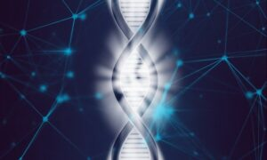 How to optimize the production of Plasmid DNA for cell and gene therapy?