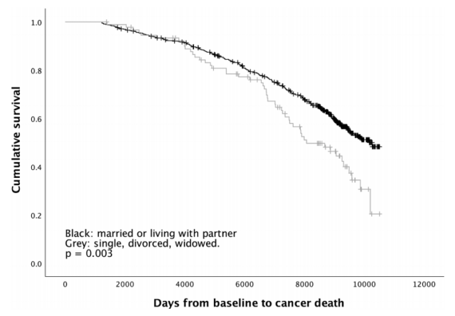Single men are more susceptible to cancer and higher cancer mortality rate