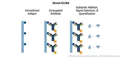 What is ELISA and its Development Optimization Improvement ?