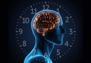 Father's circadian disorder will be passed on and affect health of offspring