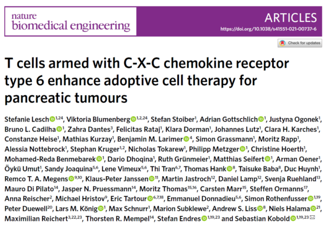 Nature: Engineering T Cells to Conquer Pancreatic Cancer