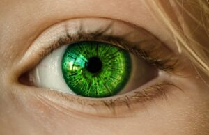 Can statins also treat Graves' ophthalmopathy except lowering lipids?