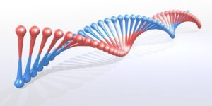 Men with GIGYF1 gene mutation 30% more risk of developing type 2 diabetes