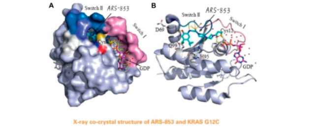 Can KRAS G12C inhibitor be expected more effective in the future?