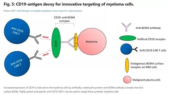The prospect of CAR-T cell therapy for the treatment of Multiple myeloma