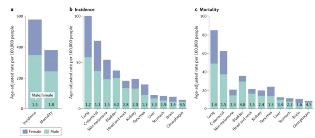 Why do men have higher overall morbidity and mortality on some cancers?