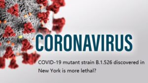 COVID-19 mutant strain B.1.526 discovered in New York is more lethal?