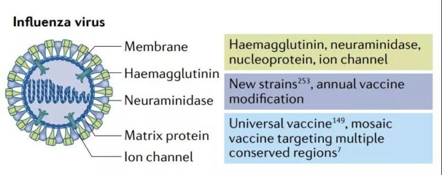 Research progress of mRNA vaccines in infectious diseases.