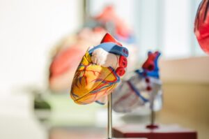 The role of protein homeostasis in pathological heart remodeling