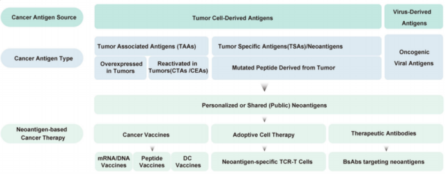 What are neoantigens in the current tumor immunotherapy?