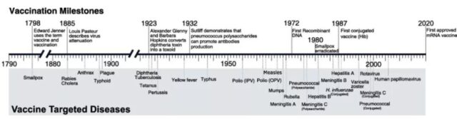Overview of the development of mRNA vaccines: Part One