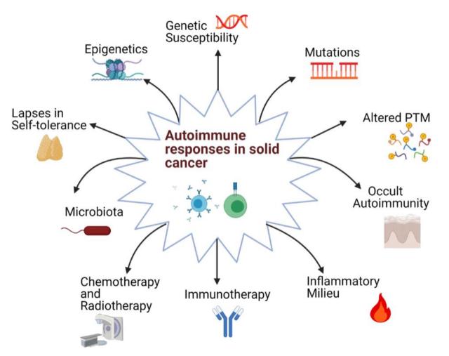 Cancer immunotherapy: Using autoimmunity in tumors against tumor cells