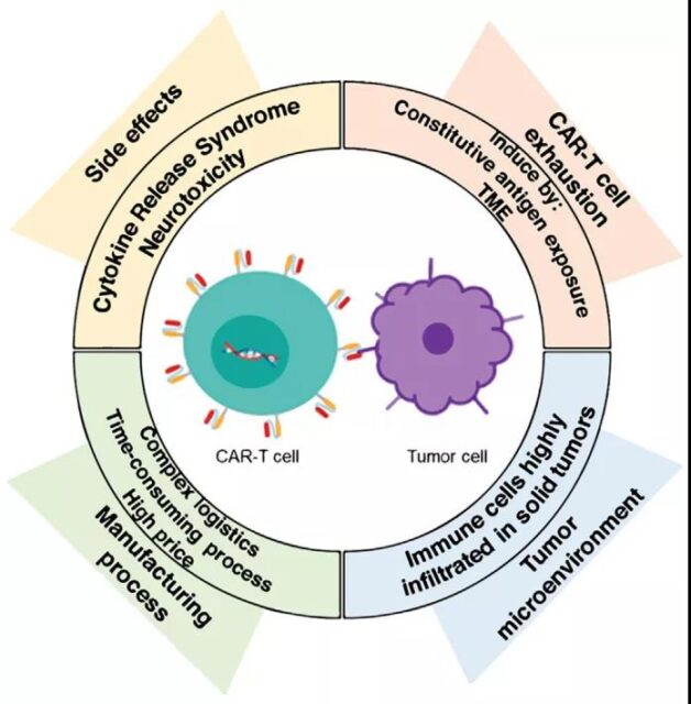 Immunotherapy: What are the challenges of CAR-T cell therapy?