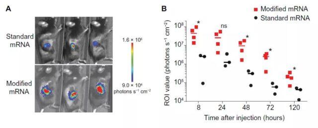 BioNTech: Injecting mRNA to promote anti-tumor immune response
