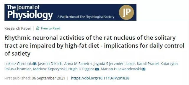 High-fat diet can interfere with the biological clock and cause obesity