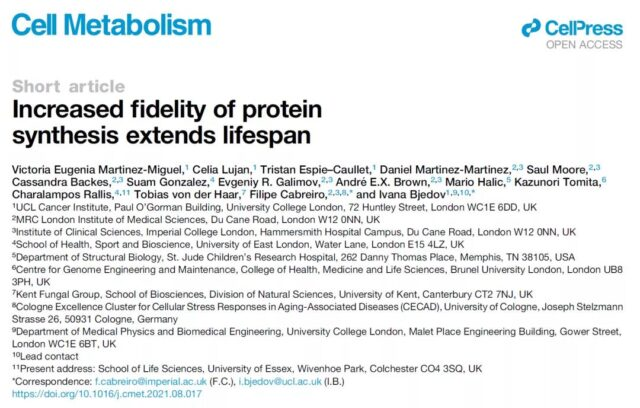 Heavy discovery: reducing protein synthesis errors can improve health and prolong life.