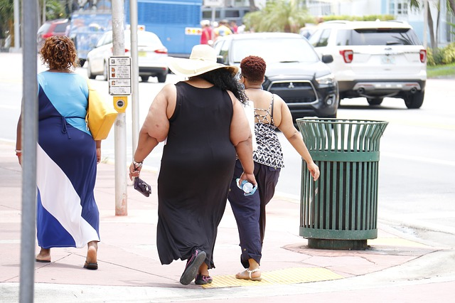 Why will Insulin resistance caused by obesity increase risks of depression?