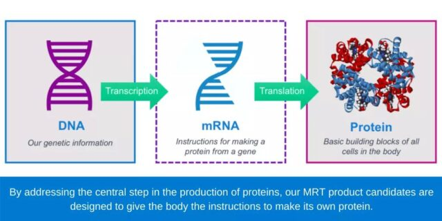 Pfizer announces the start of clinical trials of mRNA influenza vaccine