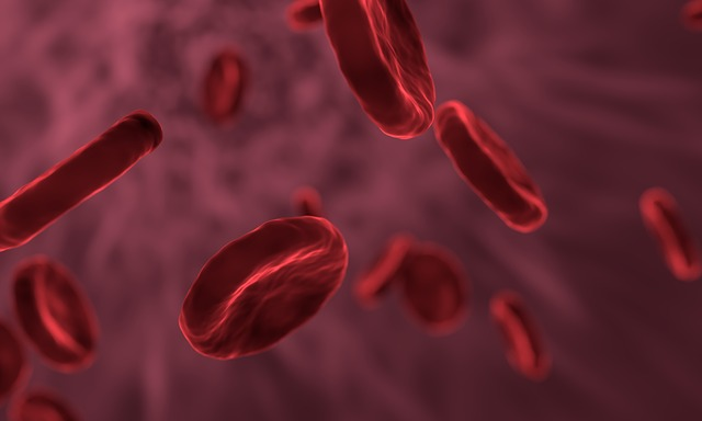 The Self-correction function of genes can resist blood cancer.