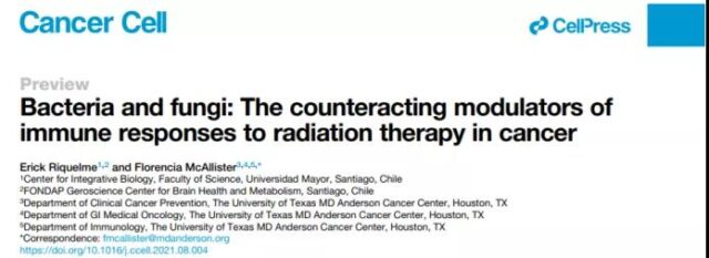 Cancer cell: Intestinal microbes may affect the effect of radiotherapy on cancer