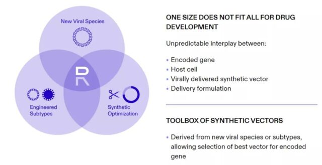 Self-replicating RNA may break through limitations of mRNA application