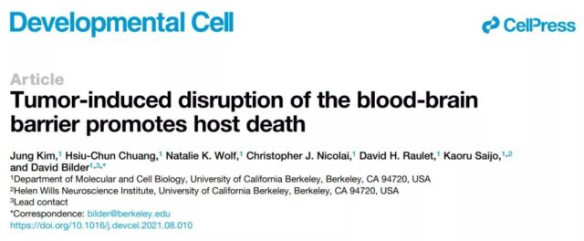 Why do Cytokines accelerate the death of cancer patients?